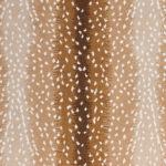 antelope_wool-nylon_broadloom_patterson-flynn-martin_pfm